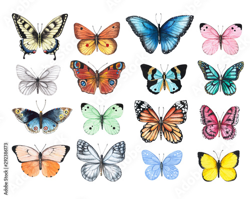 Fototapeta Set of watercolor illustrations depicting bright butterflies isolated on a white background, hand-painted obraz