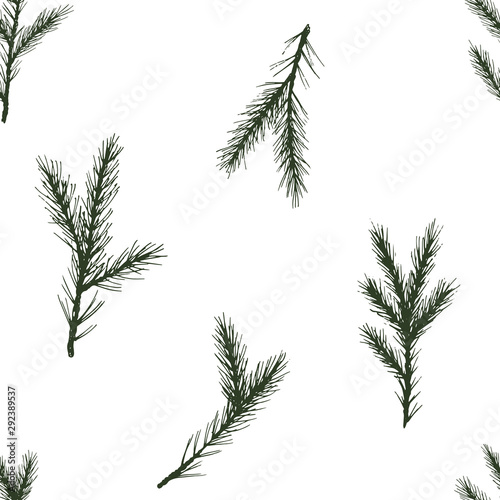 fototapeta na szkło Vector Seamless christmas pattern with green spruce on white background