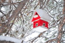 Snow Covered Red Birdhouse