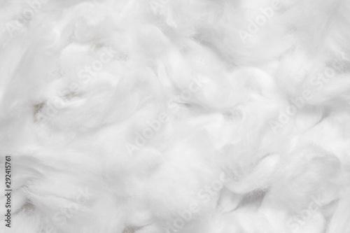 Obraz Cotton soft fiber texture background, white fluffy natural material - fototapety do salonu