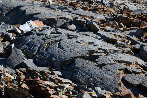 Valokuva  Rock with Glacial Striations in Desolation Wilderness