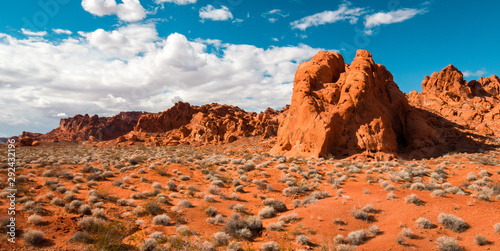 Valley of Fire Red Rocks Canvas Print