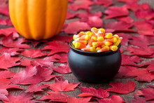 Fall Color In Red Maple Leaves On A Rustic Wood Floor With A Black Cauldron Filled With Holiday Candy Corn, With Pumpkin In Background