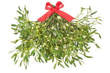 Mistletoe Bunch Tied With A Re...