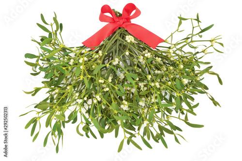 Obraz na plátně Mistletoe bunch tied with a red ribbon on white background