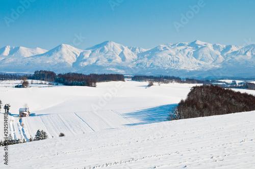 Fotomural  冬の畑作地帯と雪の山脈 十勝岳連峰