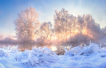 Winter Nature Landscape. Frost...