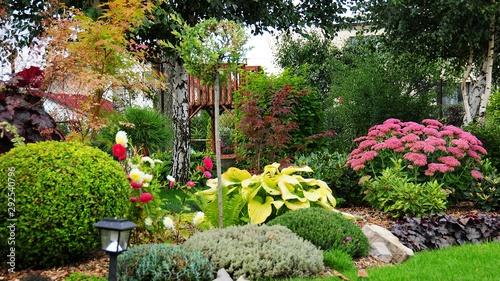 Piękne kwiaty na jesiennej rabacie - 292540796