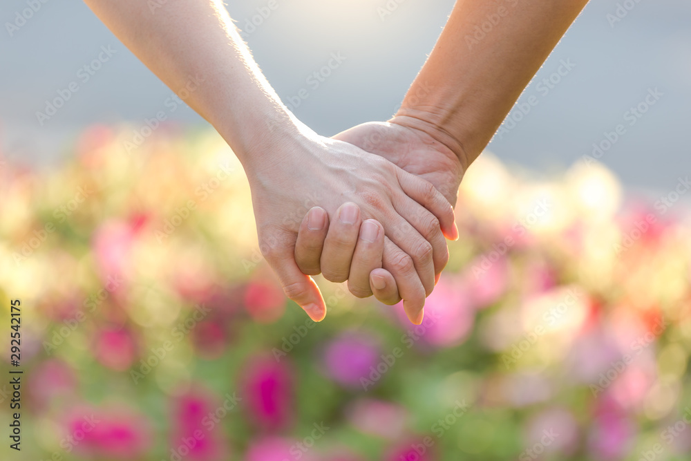 Fototapety, obrazy: Closeup of loving couple holding hands while walking in the park