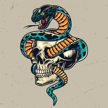 Snake Entwined With Skull Colorful Concept