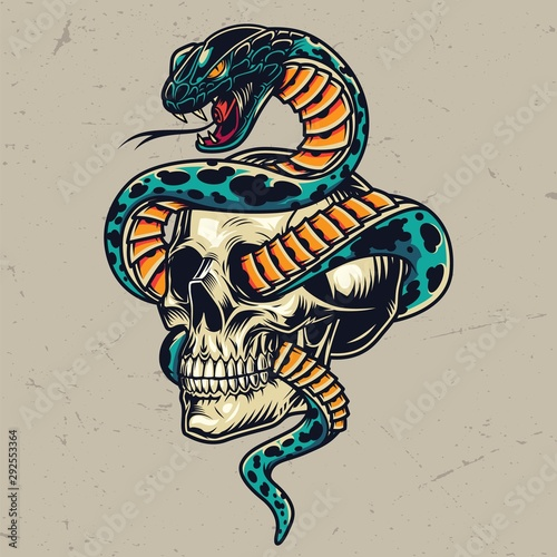 Fotografie, Obraz Snake entwined with skull colorful concept