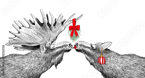 Fotografie, Obraz  Funny Christmas Card with moose kissing under mistletoe in humorous fun  holiday design