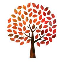 秋 紅葉の木 テクス