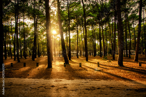 Landes, France, tourist destination