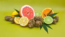 Citrique Cannabis Flower