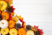 Top View Of Halloween Day Or Thanksgiving Day, Pumpkins, Maple Leaves And Pine Cone On White Background With Copy Space For Text. Halloween Concepts, Thanksgiving Concepts.