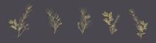 Set Of Golden Floral Compositions