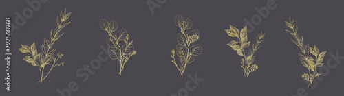 Fotografía  Set of golden floral compositions
