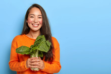 Delighted Brunette Korean Woman Holds Green Bok Choy Delivered From Farm, Wears Orange Sweater, Keeps To Healthy Nutrition, Uses Vegetable For Making Vegetarian Salad, Poses Over Blue Background