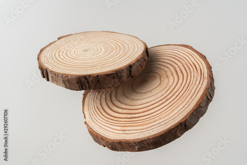 Fotografia  top view of wood piece with annual ring on white