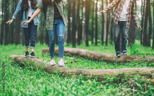 Photographie  Group of traveler walking on the log while hiking in the forest