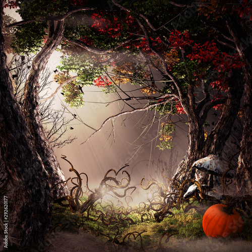 Autumn forest with pumpkin and mushrooms