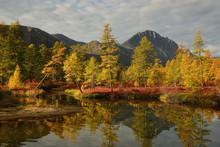 Autumn Landscape With Lake And Trees, Magadan Region, Kolyma, Jack London Lake