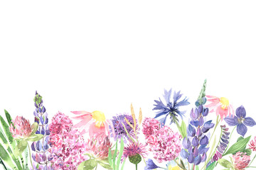 Watercolor hand painted wildflowers