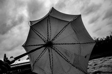 Wind-blown Umbrella, Black And...