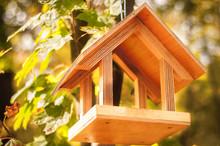 Wooden Bird Feeder On A Tree I...