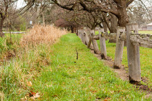An Old Fence Line Around Hall ...