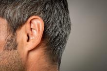 Macro Close-up Shot Of Human Ear