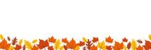 Autumn Leaves Border On White Background Vector Illustration EPS10