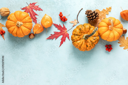 Photo sur Toile Pays d Afrique Festive autumn pumpkins decor with fall leaves, berries, nuts on blue background. Thanksgiving day or halloween holiday, harvest concept. Top view flat lay composition with copy space for greeting