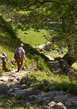 A Hiker Makes His Way Carefully Down The 250ft Path From Malham Pavement To The Cove Below Taking In The Stunning Yorkshire Dales Scenery On The Way