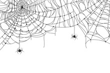 Cobweb Background. Scary Spider Web With Spooky Spider, Creepy Arthropod Halloween Decor, Net Texture Tattoo Design Vector Template