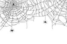 Cobweb Background. Scary Spide...