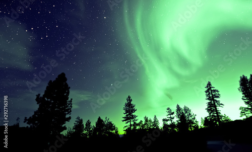 Foto op Canvas Noord Europa Northern lights aurora borealis over trees