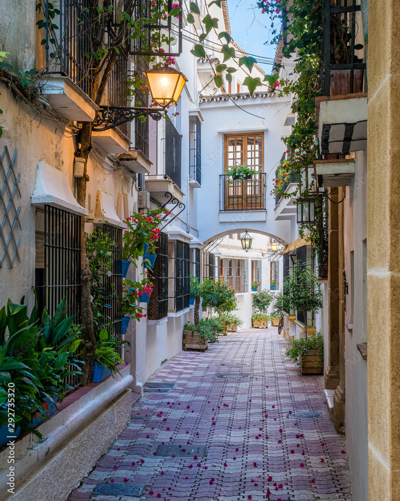 Fototapeta A picturesque and narrow street in Marbella old town, province of Malaga, Andalusia, Spain.