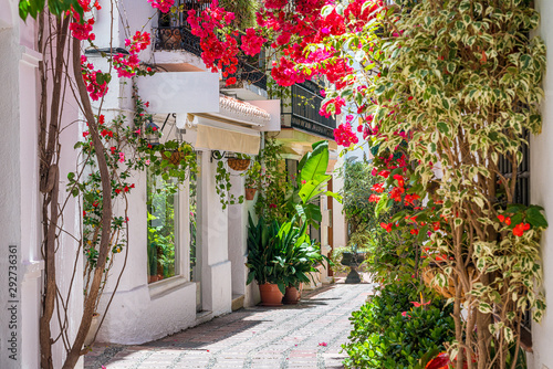 Fototapeta A picturesque and narrow street in Marbella old town, province of Malaga, Andalusia, Spain. obraz