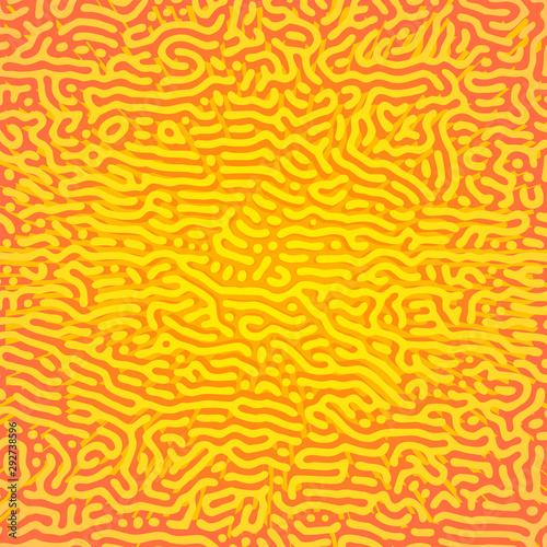 turing morphogenesis reaction diffusion pattern. Canvas Print