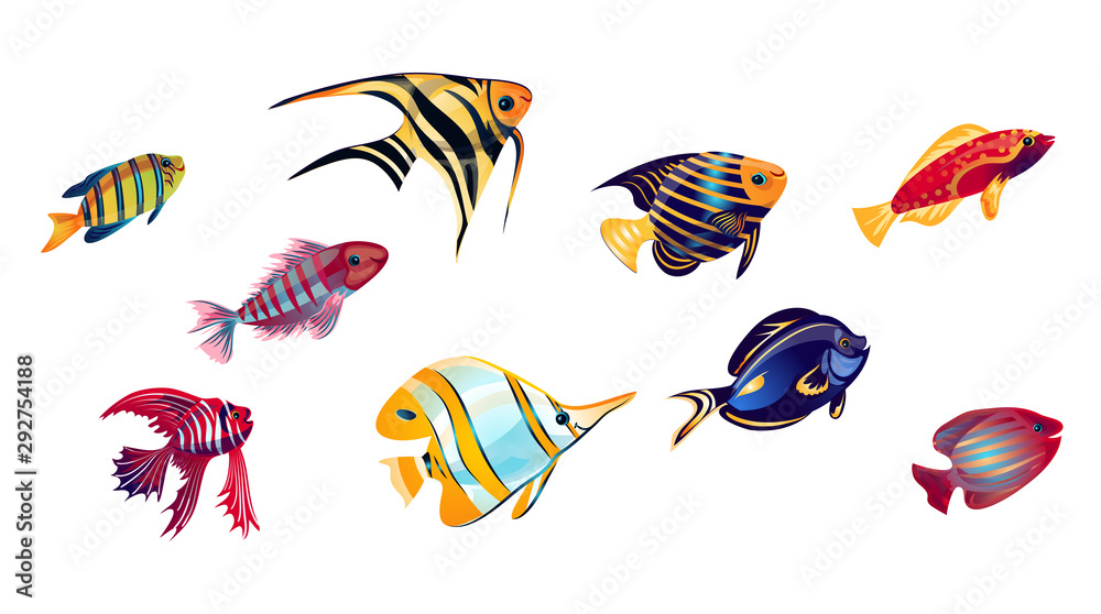 Coral reef fish set. Vector illustration in the flat cartoon style