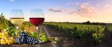 Verres De Vin Et Vignes En France