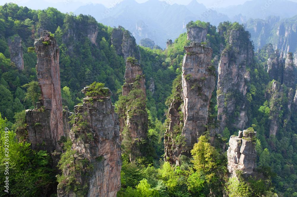 Fototapety, obrazy: Zhangjiajie National Forest Park in Wulingyuan Scenic Area, Hunan Province, China