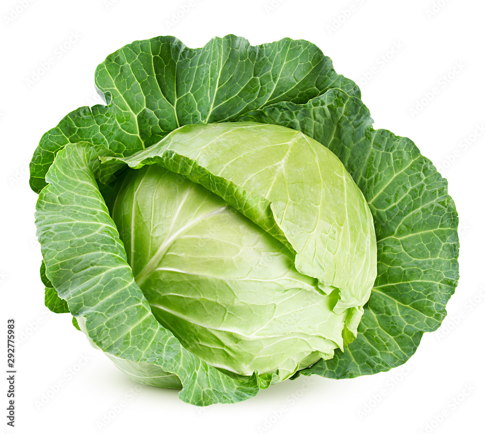 Fototapety, obrazy: cabbage isolated on white background, clipping path, full depth of field