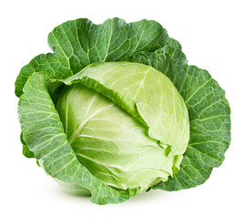 cabbage isolated on white background, clipping path, full depth of field