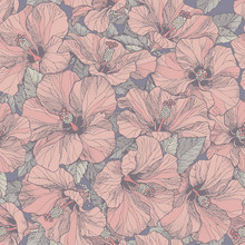 Seamless Pink Floral Pattern With Colorful Hibiscus Flowers