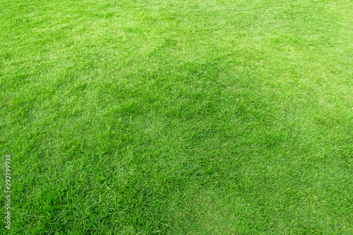 Foto auf AluDibond Lime grun Green grass texture for background. Green lawn pattern and texture background.