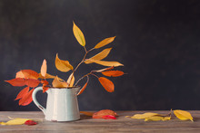 Autumn Leaves In Jug On Wooden...