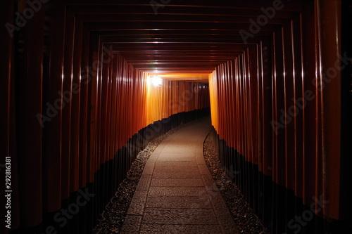Fotografie, Obraz 異世界 伏見稲荷大社 夜 ミステリアスナイト Another World Fushimi Inari Taisha Night Mysterious Night